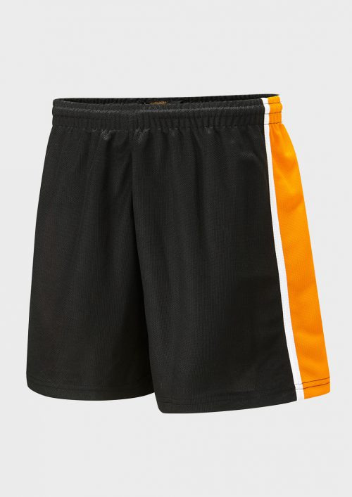 6d298d1184427 SPIRIT Panelled Sports Short - Falcon Sportswear